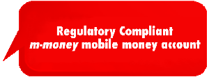 Regulatory Compliant e-money Account